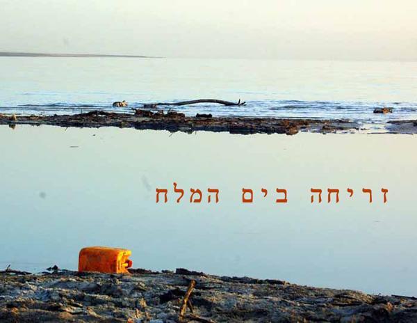 סדנת צילום בים המלח