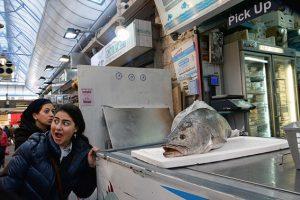 david's fish store, machane yehusa, 2018
